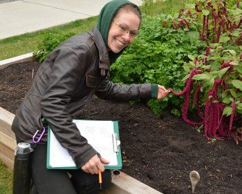 Students Begin Herb Garden