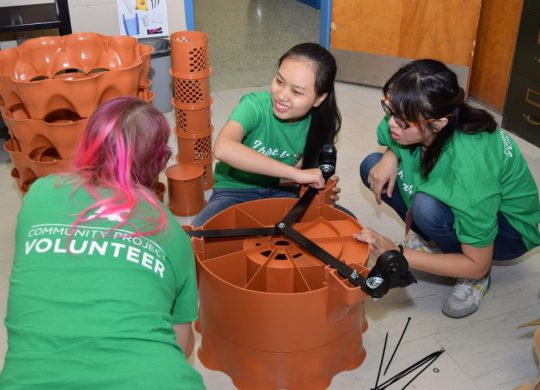 Algonquin students help bring classroom gardens to life