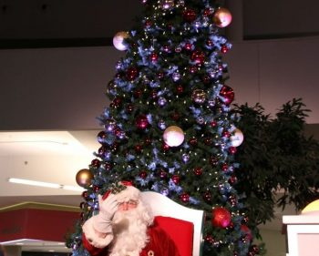 Algonquin welcomes the holiday season with annual tree lighting ceremony