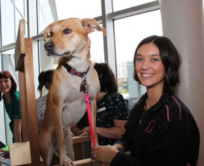 Algonquin students campaign for lower vet costs