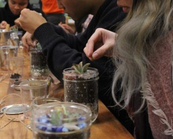 Cold outside, but Mason jar terrariums sprout green thumbs inside