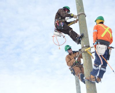 Electrical distribution industry keeps it current