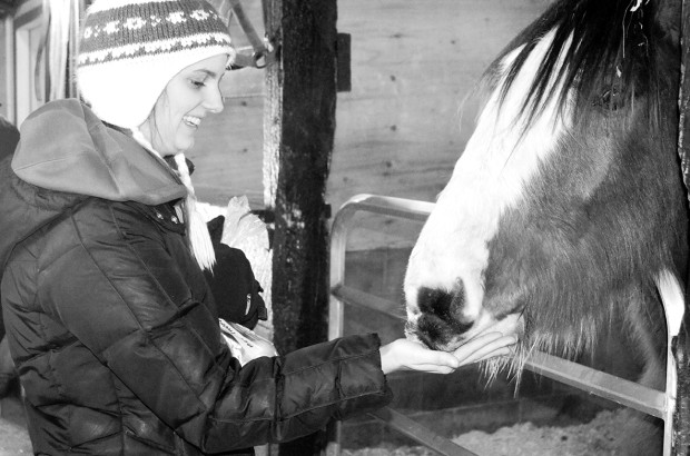 Bianca Vasile, a level two practical nursing student, feeds a horse at Big Sky Ranch animal sanctuary where she was volunteering with 13 other students. Go to algonquintimes.com to see a video report.