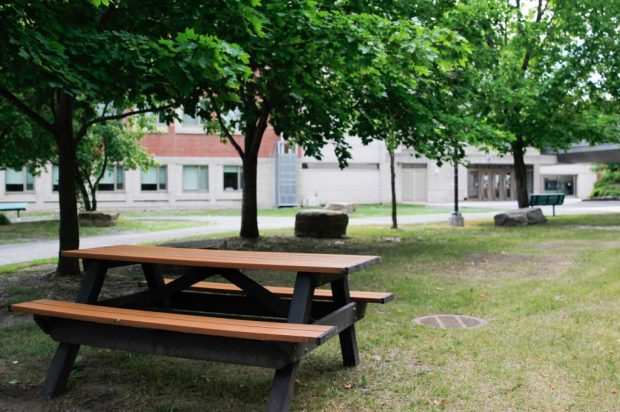Empty picnic table near a major thoroughfare on the Algonquin campus