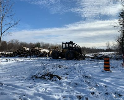 Trees fall down as LRT construction begins at Iris Station