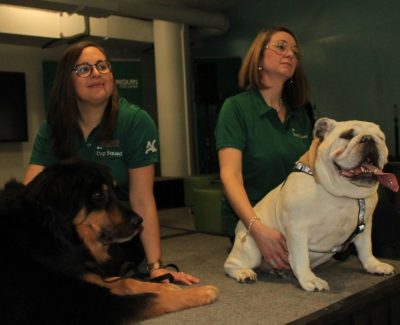 New dog therapy programs has tails wagging